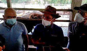 50 Persen Hewan Kurban di Kota Palembang Tidak Memenuhi Syarat