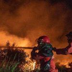 Petugas Gabungan Padamkan Kebakaran Lahan di Desa Sungai Rambutan