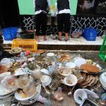 Indonesia Negara Penghasil Limbah Makanan Tertinggi ke Dua di Dunia