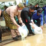 Herman Deru Tebar Puluhan Ribu Benih Ikan di Sungai Rawas